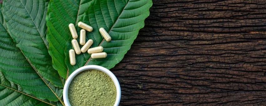 Les alternatives santé par les plantes
