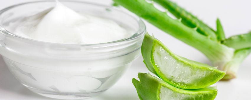 Les bienfaits des produits contenant de l'Aloe vera