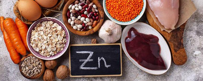 Guide en ligne pour connaitre les aliments riches en zinc