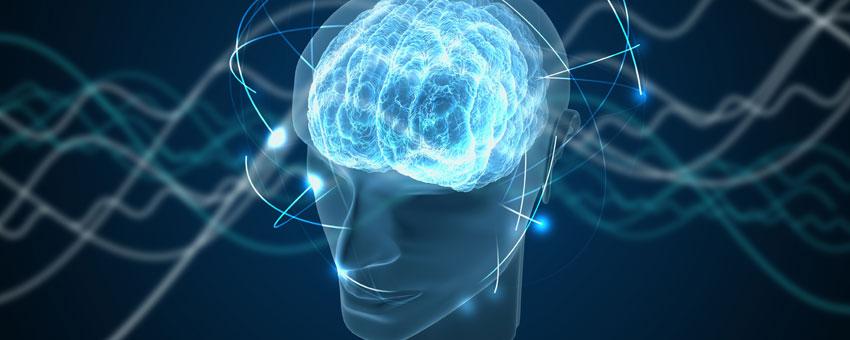 Différents types de formations autour de l'hypnose