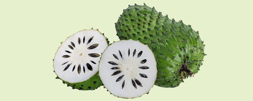 Plantes médicinales : découvrir les bienfaits du graviola corossol